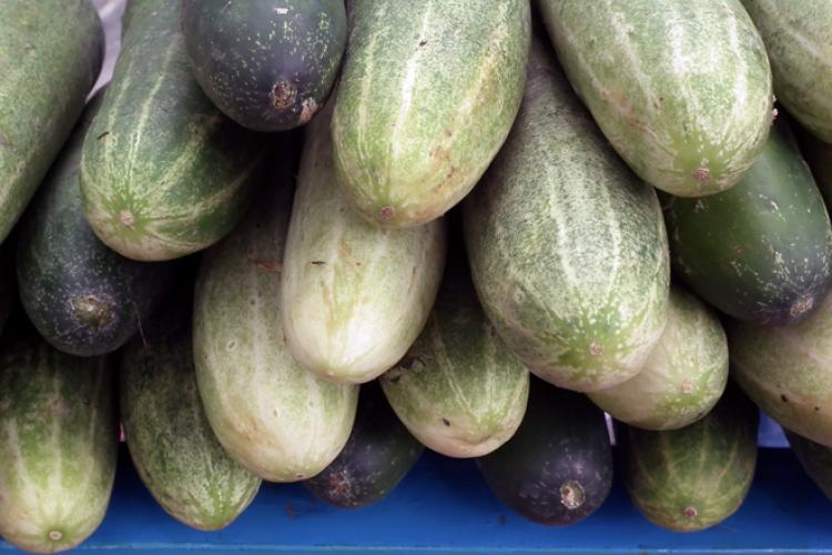 A pile of cucumbers on a market stall