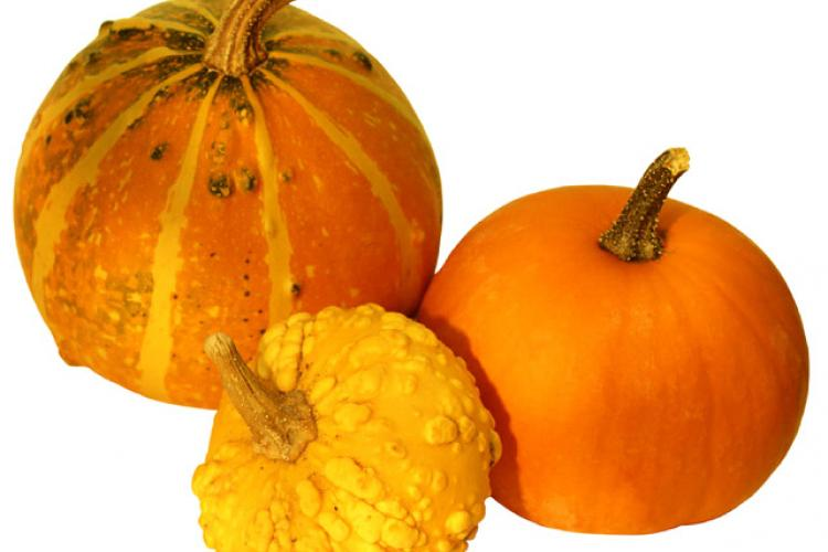 Three pumpkins of different types.