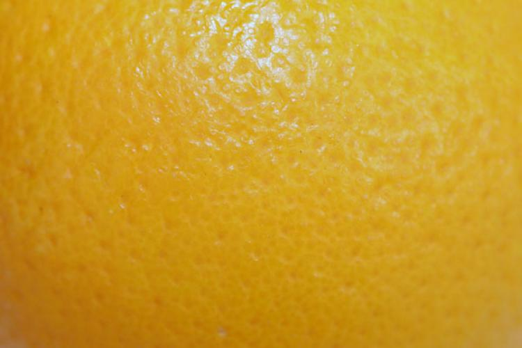 Close up of the sking of an orange.