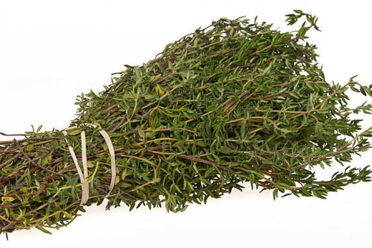 Bundle of thyme.