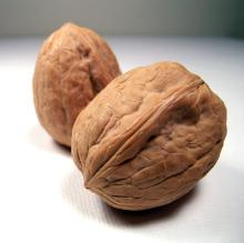 Two walnuts, shelled.